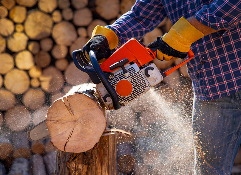 Chainsaw Buyer's Guide