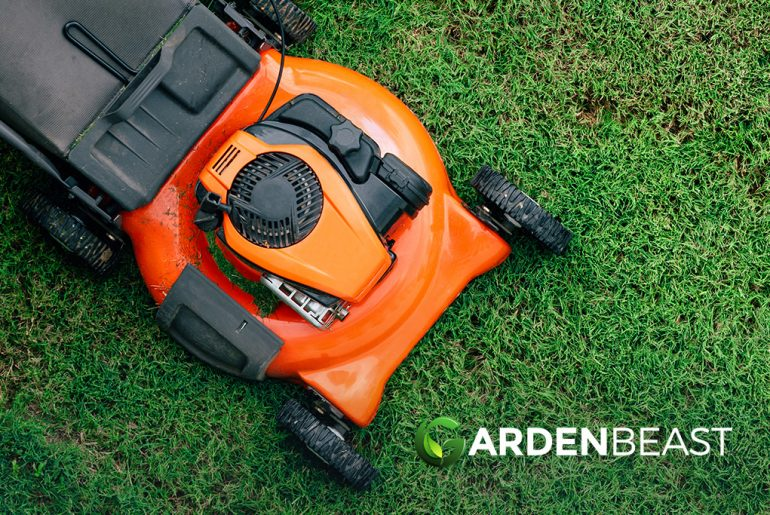 Electric vs Gas Lawn Mowers: