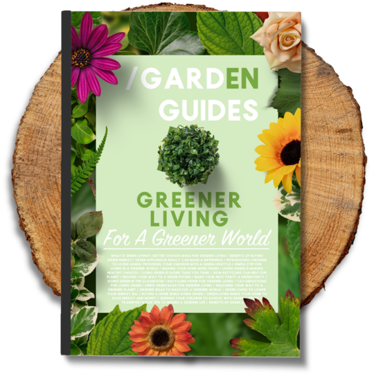 Greener Living eBook