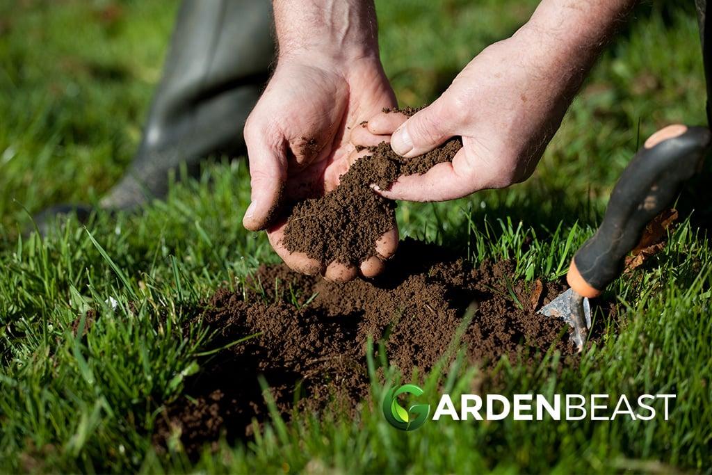 Best soil sample
