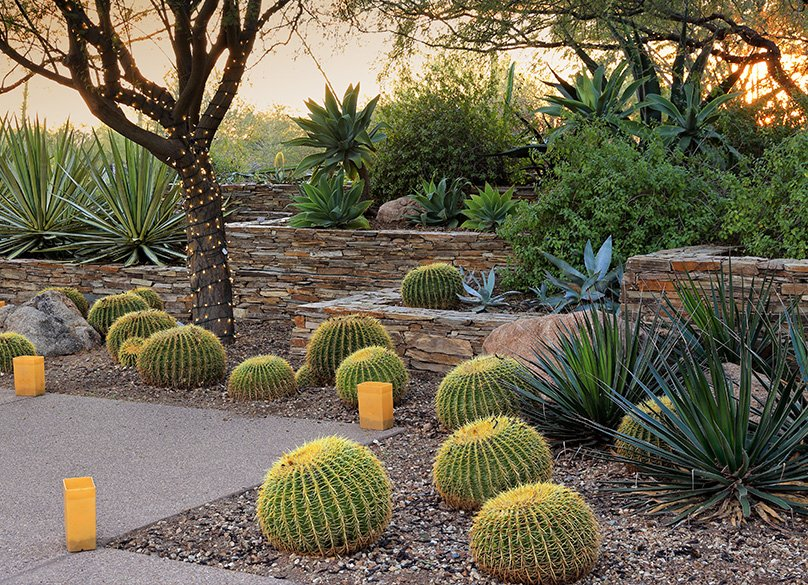 Stacked stone walls & Cactii