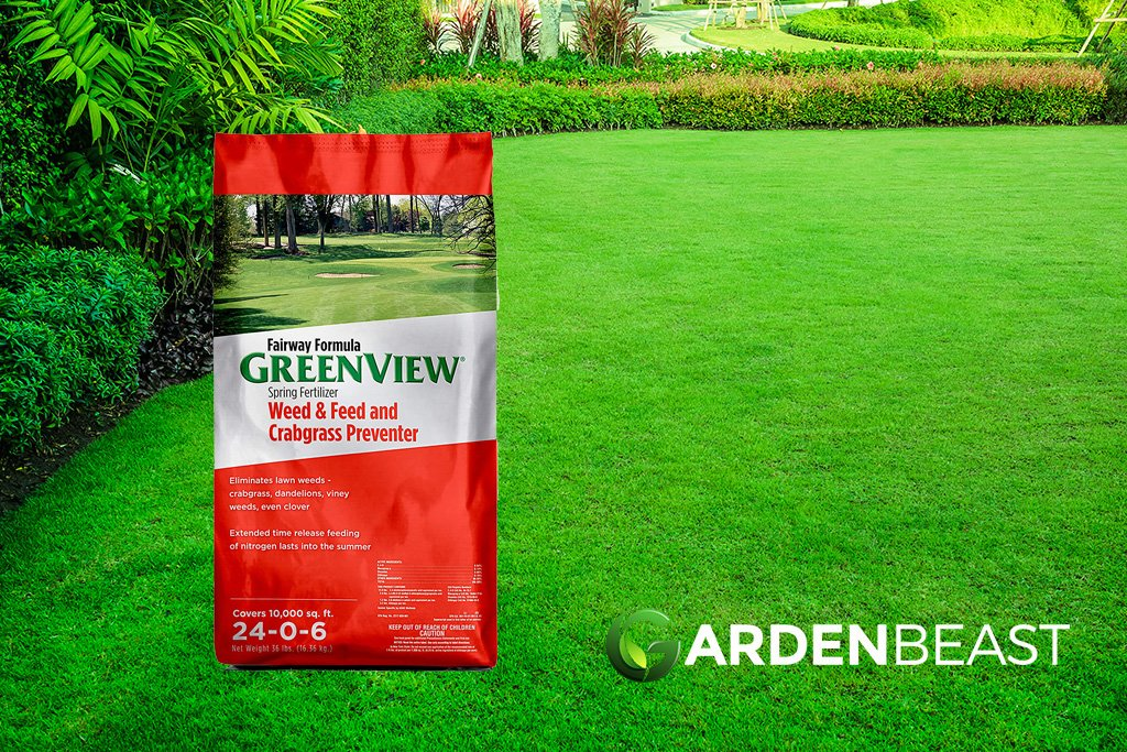 Best Weed And Feed For Lawns 2020