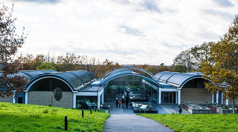 The Millennium Seed Bank is home to more than 2.3 billion seeds from more than 40,000 species