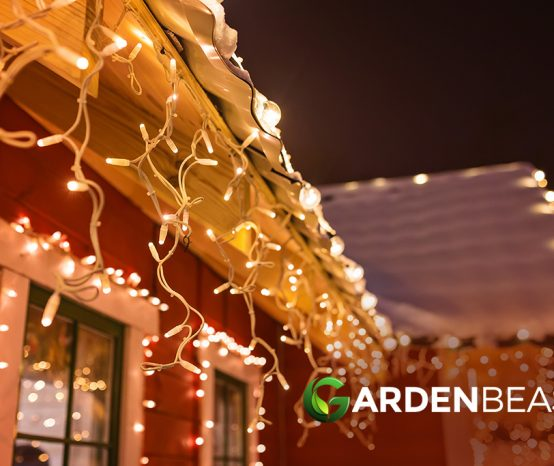 Best Outdoor Christmas Lights Reviews: Complete Buyer's Guide