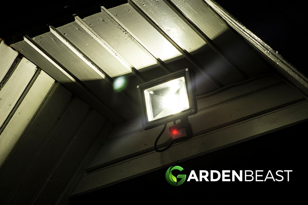 Best Outdoor Motion Sensor Lights Reviews Complete Buyer S Guide