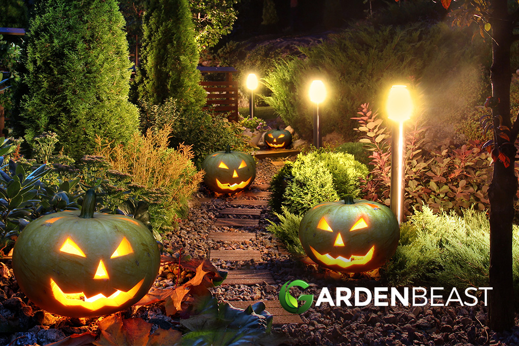 Image of: Best Outdoor Halloween Decorations Reviews Complete Buyer S Guide