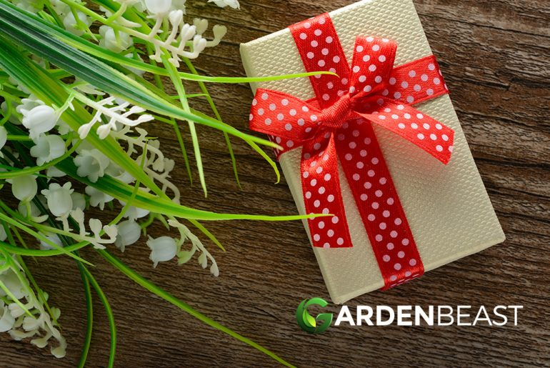 Best Christmas Gifts for Gardeners