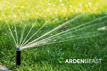 Best Sprinkler Heads