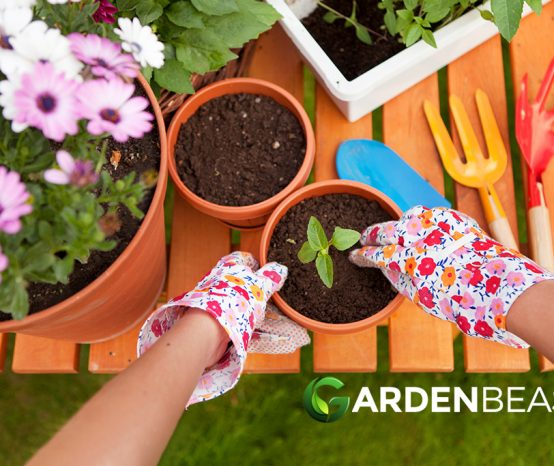10 Tips for Spring Gardening: Tasks to Prepare for The Season Ahead